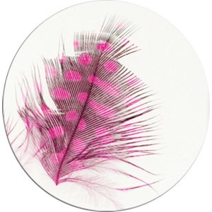 FEATHERS - DECORATIONS FROM THIN EMBRACING THE FINISHING GEL