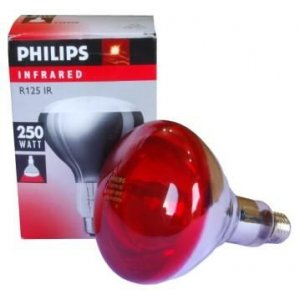Bulb infrared 250W