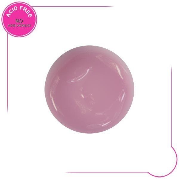 rosa coprente (302P)